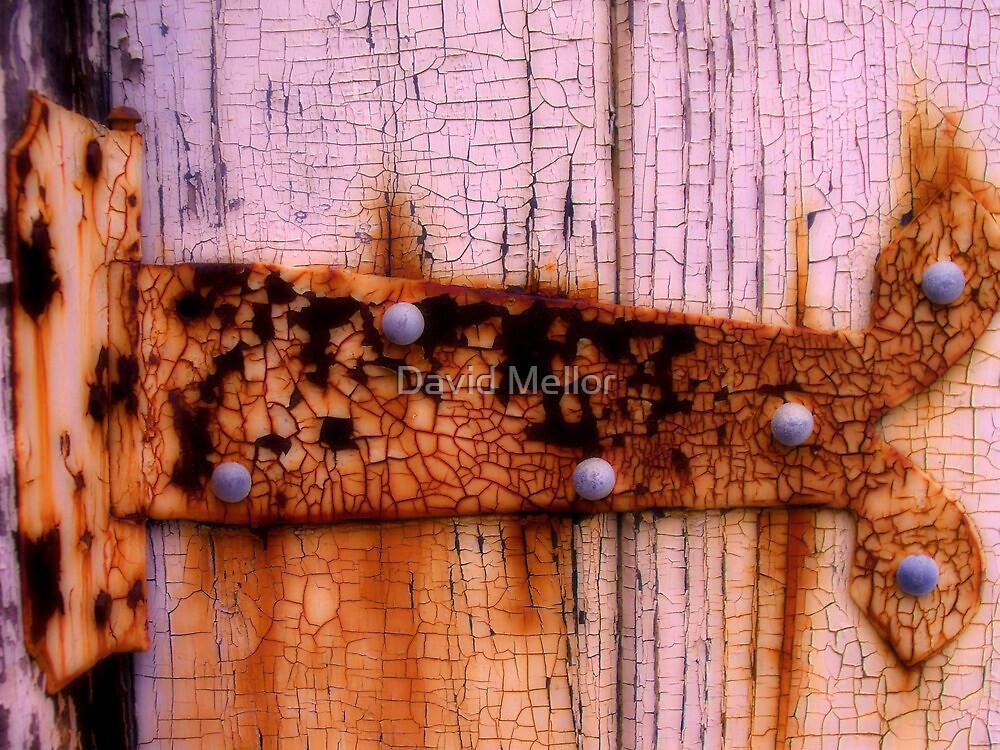 Hinge- Presidio- San Francisco by David Mellor
