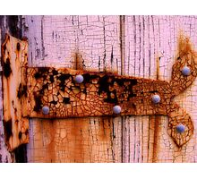 Hinge- Presidio- San Francisco Photographic Print