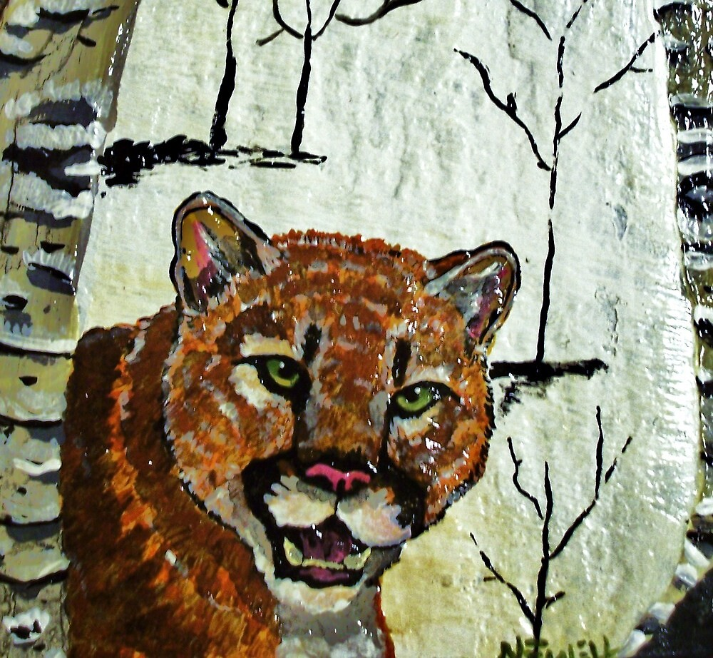 newell cougar women Cougar mountain trail run series bellevue, wa  website  women '17 zachary szablewski (27)  aaron newell (24).