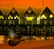 Jetty Lights by Philip Cannon