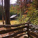 Smoky Mountain Log Cabin by NCBobD