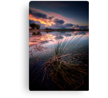 Spiked Canvas Print