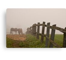 Misty Morning On The Farm Canvas Print
