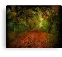 The Red Carpet. Canvas Print