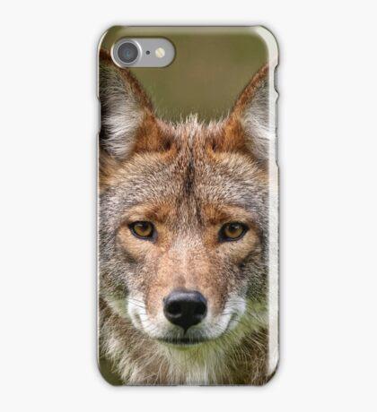 Coyote Portrait  iPhone Case/Skin
