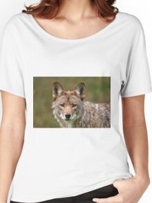 Coyote Portrait  Women's Relaxed Fit T-Shirt