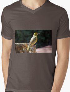 Spottedbacked Weaver Mens V-Neck T-Shirt