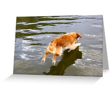 Jumping in to meet yourself Greeting Card