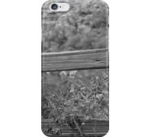 A Wooden Fence iPhone Case/Skin