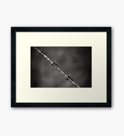 'barbed' Framed Print
