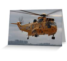 Rescue Seaking Greeting Card