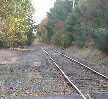 Foxboro's Patriots Commuter Rail's Train Track Part 2 by Eric Sanford