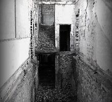 Missing Turns  by Paul Lubaczewski