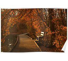 Sunrise at Powell Crosley Lake  Poster