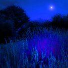 BLUE HEAVEN by leonie7
