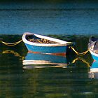 Dinghies - Fernald Cove by David Clayton