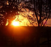 A Glowing Sunset by Vicki Spindler (VHS Photography)