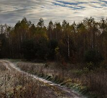 Small path (Autumn 2010) by Antanas