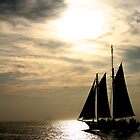 Tall Ship, Sunset - Key West Florida by Debbie Pinard