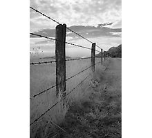 Barbed - Blue Ridge Parkway Photographic Print