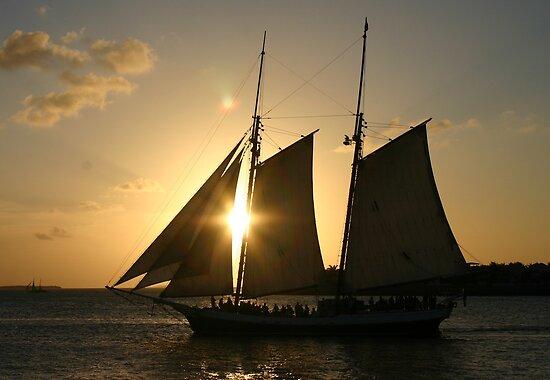 Sun Peeking  Through a Tall Ship - Key West by Debbie Pinard