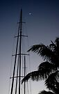 Moon, Mast and Palm Frond - Key West by Debbie Pinard