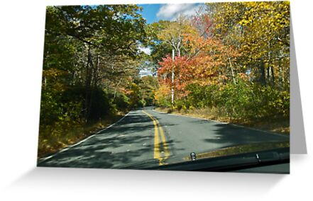 Drive Down Ministerial Road - Fall in Rhode Island by Jack McCabe