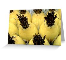 Barrel Cactus Fruit Greeting Card