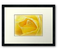 Lemon Petals Framed Print