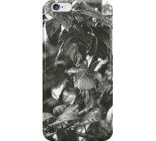 35mm #1 iPhone Case/Skin