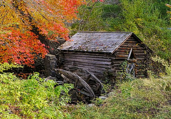The Forgotten Grist Mill by Pamela Phelps