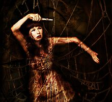 caught in a web by annacuypers