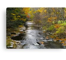 Streaming Solitude Canvas Print