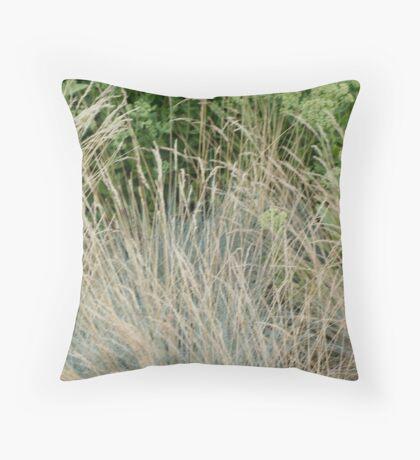 grasses @ Como Throw Pillow