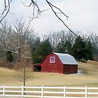 Western Ky. Barn by Mona Gainey-Lanier