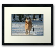 Just For You Ma! Framed Print