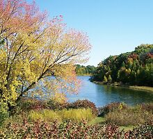 John Muir Park, Montello Wisconsin by Mona Gainey-Lanier