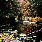 Monet in Brockdish? by GraceEloise
