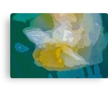 Daffodil - posterised Canvas Print