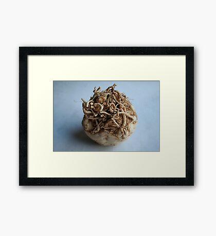 Root Vegetable Framed Print