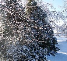 Winter, Decatur IL by Mona Gainey-Lanier
