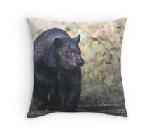 Young Adult Black Bear Throw Pillow