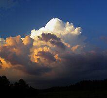 An Approaching Storm by Judy Wanamaker