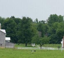 The Amish Farm in color Sticker