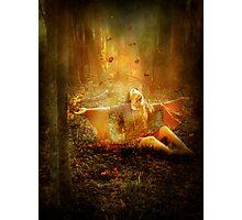 Autumnal Light Photographic Print