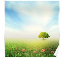 Summer, Field, Sky, Tree, Grass, Poppy Poster
