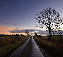 Country Road Sunrise by Nigel Bangert