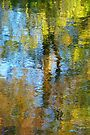 watery  impressions  by dinghysailor1