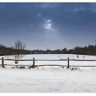 Snow pano by Rose Atkinson