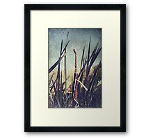 What Is Left Framed Print